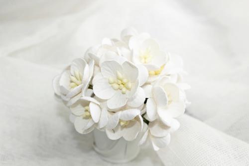 Цветы вишни белые 5шт.