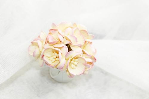 Цветы вишни персиковые 5шт.