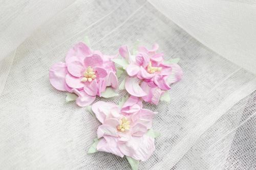 Гардения розовая 1шт.