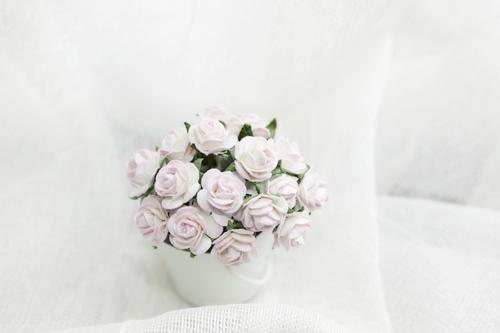 Розы 10 мм, бледно-розовые пестрые 10шт.