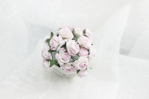 Розы 10 мм, пёстрые 10шт.